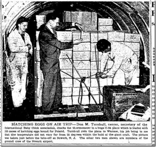 Don M. Turnbull, Secretary of the International Baby Chick Association, preparing for Veterans Air Warsaw flight in 1946